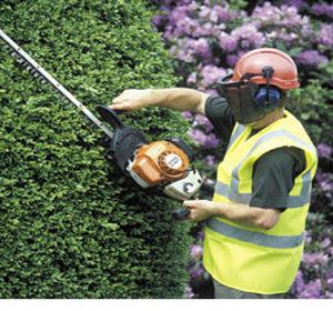 Mantenimiento de jardinería en Madrid